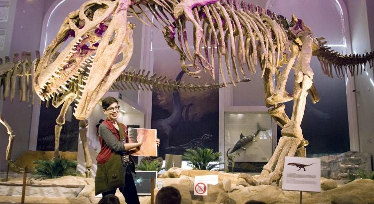 luomus-dinosaurus-750x510